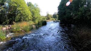 Der Tidan fließt überwiegend ruhig, hier ist eine Strömungsstelle zu sehen, die ein breites Grinsen in jedes Gesicht bringt, wenn man hindurch paddelt.