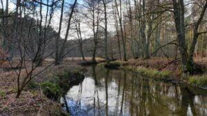 Der Rhin hat selbst im Spätherbst noch einiges zu bieten. Der wunderschöne, Natur überlassene Fluss Rhin in seiner ganzen Pracht. Kajak-Tagestour Auf dem Rhin von Rheinsberg nach Zippelsförde Samstag nur vom 15. Juni - 31. Oktober befahrbar