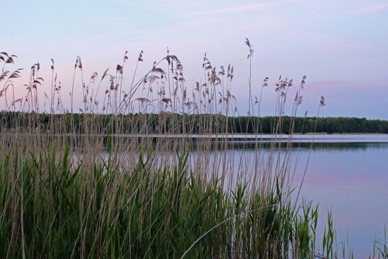 Eine Reise durch den Müritz-Nationalpark – Paddelwanderung über fünfzehn Seen in fünf Tagen. Wesenberg, Woblitzsee, Ahrensberg am Drewensee, Drewensee, Wangnitzsee, Kleiner Priepertsee, Großer Priepertsee, Priepert, Müritz-Havel-Wasserstraße, Strasen, Schleuse Strasen, Große Flake, Großer Palitzsee, Kleiner Palitzsee, Canower See, Canow, Schleuse Canow, Labussee, Großer Peetschsee, Vilzsee, Fleeth, Fleether Mühle, Fleether Wehr, Rätzsee, Gobenowsee, Neu Canow, Kienzsee, Wustrow, Plätlinsee, Naturschutzgebiet Nordufer Plätlinsee, NSG, Schwaanhavel, Havel, Quellgebiet Havel, Kajakwandern, paddeln, Erholung am Wasser, See und Flüsse.